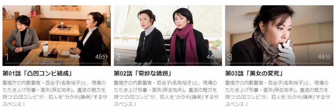 「特命刑事 カクホの女」のドラマ動画(1話~7話<最終回>)